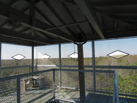 Okefenokee Swamp Observation tower